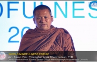 Ven. Assoc. Prof. Dr. Hansa Dhammahaso